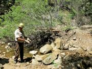 CCC leader explains to hius crew how he wants to reinforce this creek crossing.
