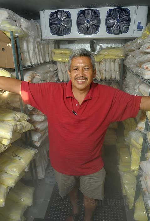 """Francisco """"Chico"""" Bautista gets ready for Fiesta with lots and lots of tamales."""