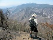 Otis looking down into upper Ellwood Canyon, which is almost completely burned out.