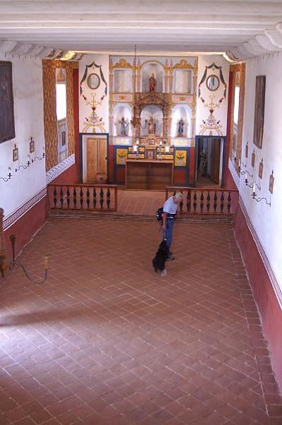 John Grebenkemper and his dog Tali search the Presidio chapel.