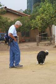 John Grebenkemper leads his dog Tali on a search outside the chapel.