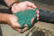 This thick green, gooey substance covers the burned area with a layer of coating that resists erosion.