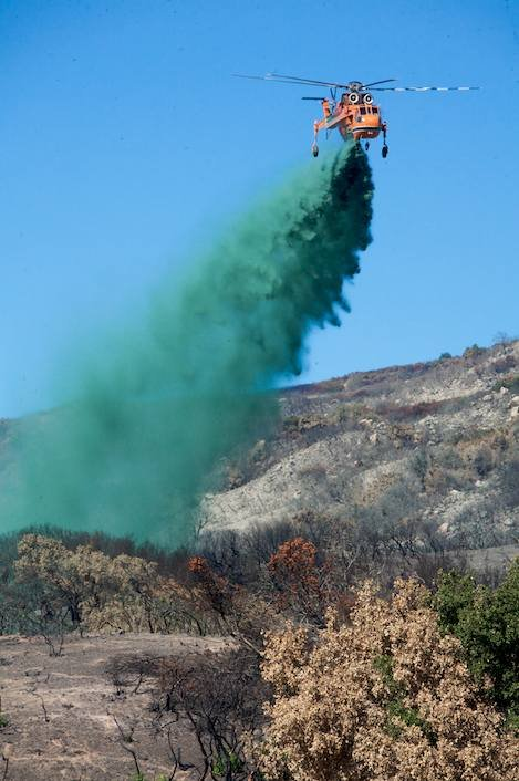 Hydromulching Nears 50 Percent Coverage in Forest; Private ...