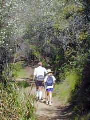 Father and daughter work their way through the chaparral covering on a spring day.