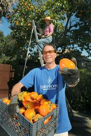 Backyard Harvest program director Doug Hagensen holds some fresh picked persimmons with help from Volunteer Nicola Gordon