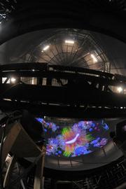 The Allosphere