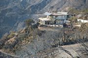 Home along Gibraltar Road survives despite everything around it burning.
