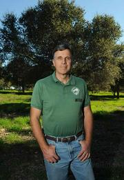 Ken Knight is admired for his tree-hugging ways, but some community members believed a conflict of interest was created when he served as a Goleta city planning commissioner and, at the same time, the executive director of Goleta Valley Beautiful.