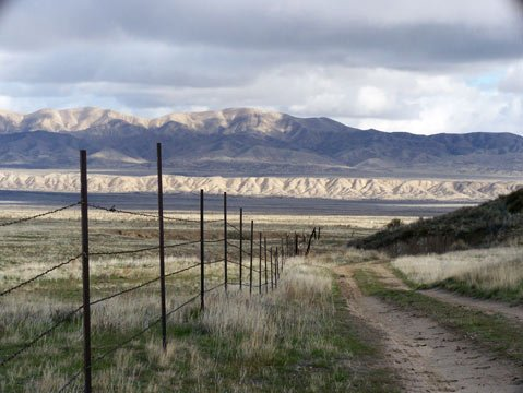 <strong>FIELDS FOREVER:</strong>  Grasslands roll eastward toward the Temblor Range, where the San Andreas Fault rips apart the flat surface of the Carrizo Plain, the last remnant of what the 300-mile-long San Joaquin Valley looked like before agriculture took over.