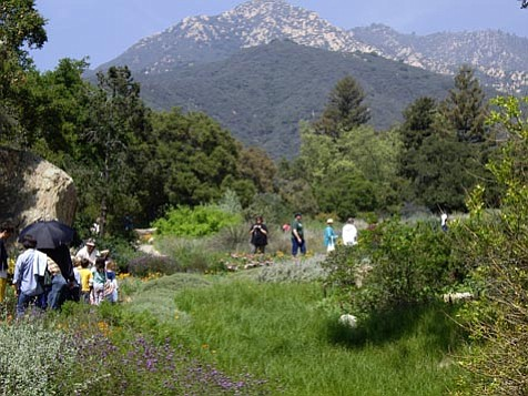 A place of natural beauty, the Santa Barbara Botanic Garden is now awash in financial turmoil and brewing controversy.