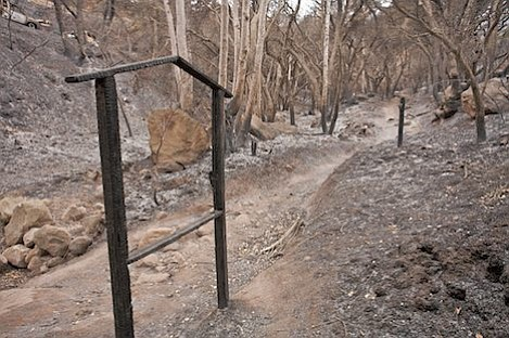Be expected to see burned landscape such as this along Jesusita Trail above Moreno Ranch.