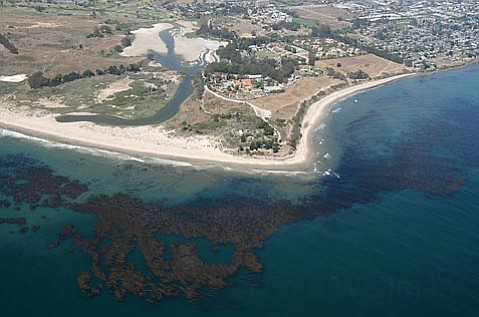 <strong>This or that</strong>:  A partial look at one area, Isla Vista Reef and the waters surrounding it, being considered for protection because of its crucial kelp beds, hard bottom, and deeper, biodynamic offshore waters. These are the qualities that make the area a prime contender for preservation as well as fertile fishing grounds for shellfish. Photo taken via LightHawk flight services.