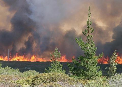 A view of the Vandenberg Fire Sept. 30, 2009