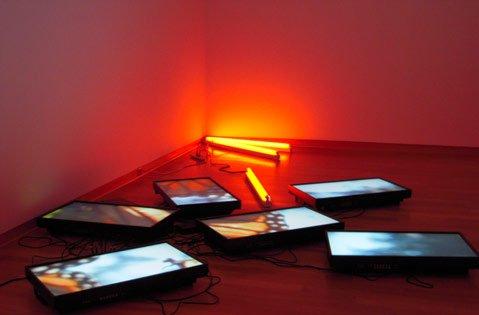 "Diana Thater's ""Untitled Videowall (Butterflies)"" (2008)."