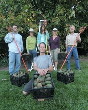 Clockwise from center Backyard Harvest program director Doug Hagensen, with volunteers Dave Grouulex, Kate Clarke, Daniela Demetrio, Virginia Clarke, and John-peter Yunka pose with a sampling of an afternoon's work.