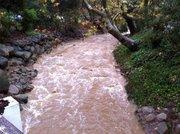 Swift water at Junipero Street Bridge, December 20; photo by Chris Eckenrode