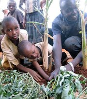 Mohamad teaches children how to use greywater system for corn.