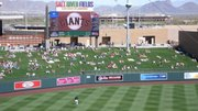Lawn at Salt River Fields