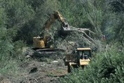 Channel Islands' Coastal Wetland Restoration Project at Prisoner's Harbor on Santa Cruz Island