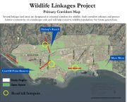 Wildlife Linkages Project