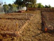 Phase 1 of Trinity Gardens