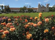 Mission Rose Garden
