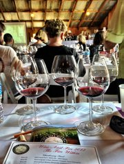 Pinot noir panel at Fire & Wine 2012.