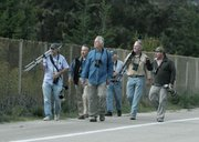 Birders on the hunt for the gray hawk