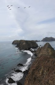 A view from East Anacapa Island