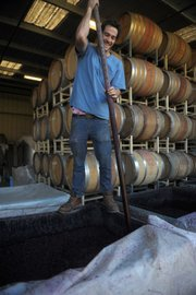 Intern Marc Piro punching down the harvest.