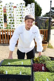 Chef Brandon Hughes brings freshly picked veg to dishes at Wine Cask.