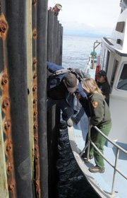 Filmmaker Kevin White boards the Sea Ranger II from the Anacapa Island dock (March 2013)