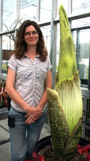 Danica Taber, UCSB biology greenhouse manager, stands next to the school's Titan Arum that's ready to bloom