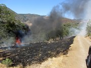 Car burns itself out along the edge of the narrow dirt road leading down to the Farmhouse.