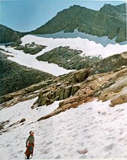 <b>A WALK IN THE SUN:</b>  Barney peers up the melting Lyell Glacier during a hike up the mountain with his son Barclay, who took this photo, in the 1980s.