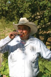 <b>HAPPY DAYS:</b>  Felipe Hernandez enjoys the fruits of his 30-plus years of hard work in the vineyard.
