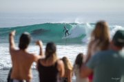 Abby Brown shares a wave with dolphins at the Rincon Classic