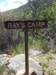 Ray's Camp