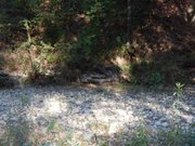 Manzana Creek in the drought