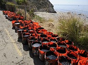 Several citizens outraged by the response time of the oil spill cleanup and taking matters into their own hands, filling buckets just South of Refugio Beach (May 20, 2015)