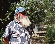 """<b>BEARDED WONDER:</b>  Marc """"Treebeard"""" Kummel studies the nature of the Los Padres backcountry, posting photos of species like this American painted lady butterfly on his website."""
