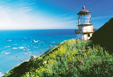 The beautiful Humboldt coastline, a county in which marijuana is the king crop.