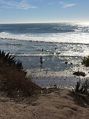 Surfing Coal Oil Point