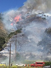 At 75 percent contained, the vegetation fire has burned 50 acres of land between Ventura and Ojai.