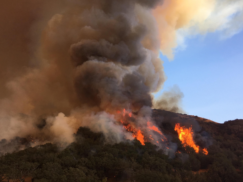 Rey Fire, Saturday, August 20, 2016
