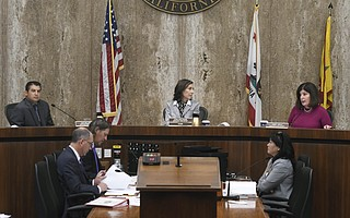 County supervisors Janet Wolf and Das Williams — both liberal progressives — are known for their different public styles. Wolf tends to be very process-oriented, while Williams is known as an ambitious political fighter. They clashedTuesdayover library funding.